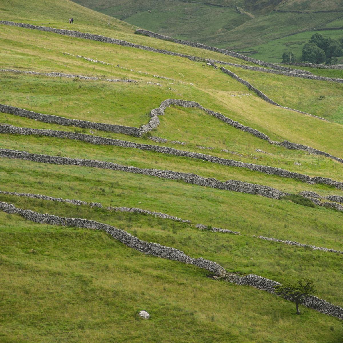 Walls, Malhamdale