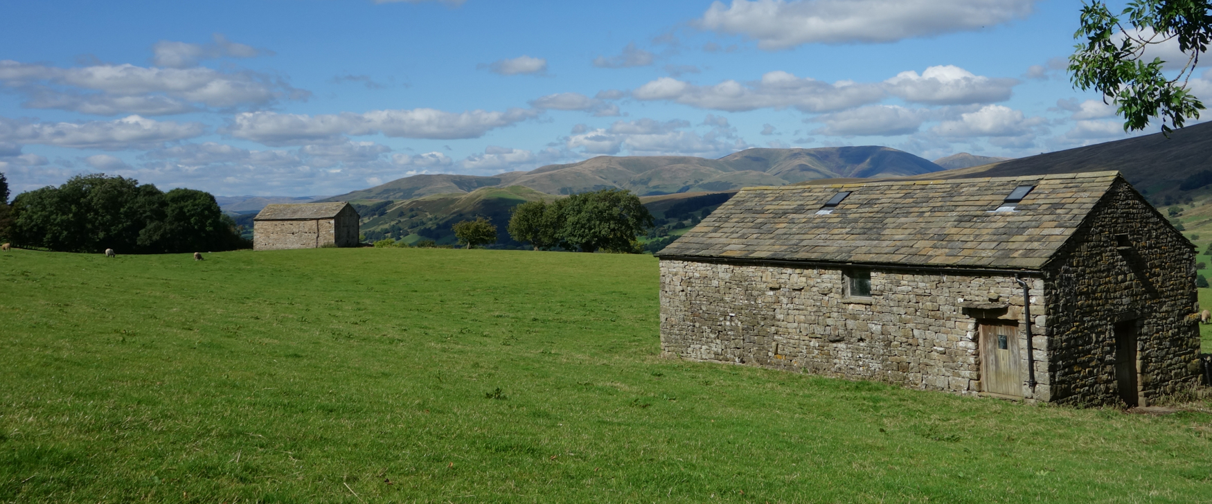 Field barns with Howgills behind