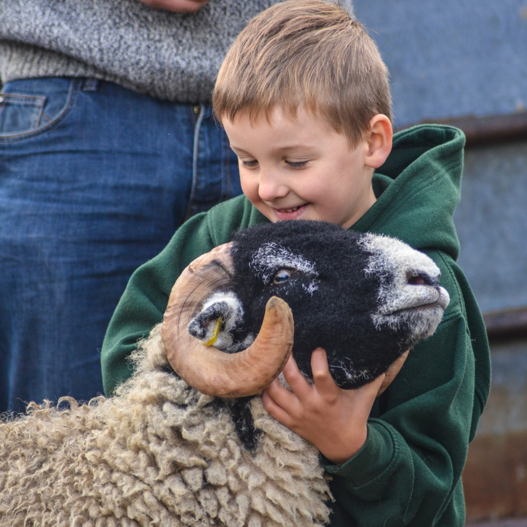 George Bland with his winning Swaledale tup lamb at Hawes Auction Mart October 2016
