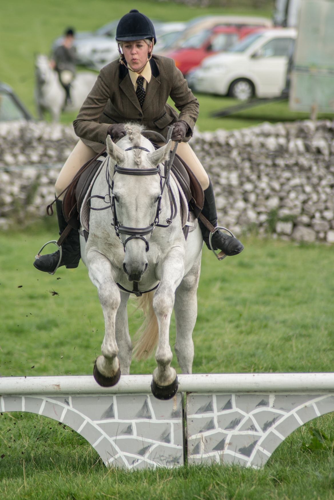Malham Show, horse jumping