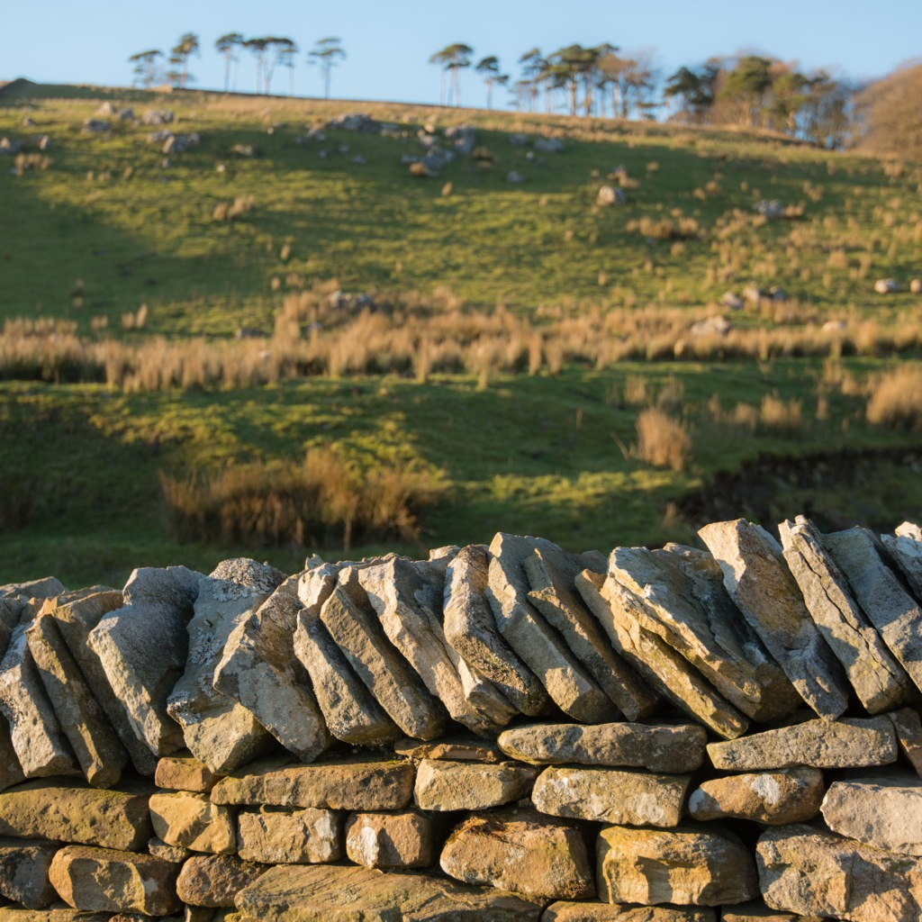 Cap stones top a dry stone wall in Wensleydale, Yorkshire Dales