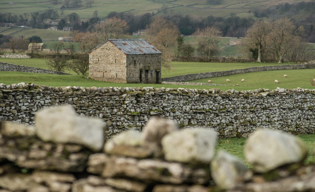 Walls and Barns : looking into Wensleydale from Thornton Rust, Yorkshire Dales. Photograph Rob Fraser