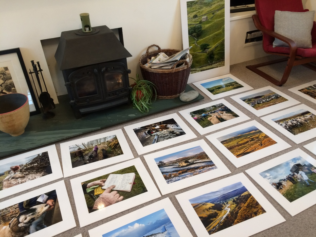 Voices from the Land Exhibition prints laid out